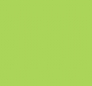 Bright Lime 20 x 30