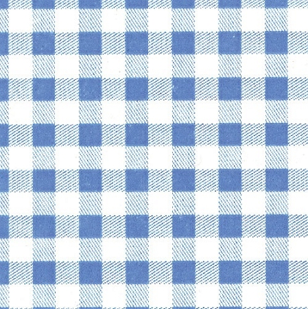 Pale Blue Gingham