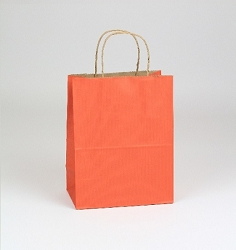 Shopping Bag SS Terra Cotta 5.5x3.25x8.375