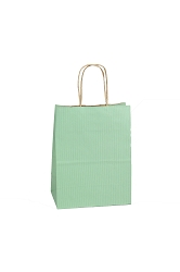 Shopping Bag SS Sage 5.5x3.25x8.375