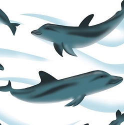 Dolphins 20 x 30
