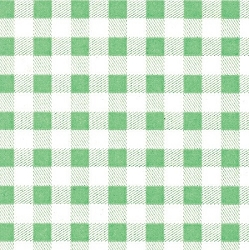 Pale Green Gingham 20 x 30
